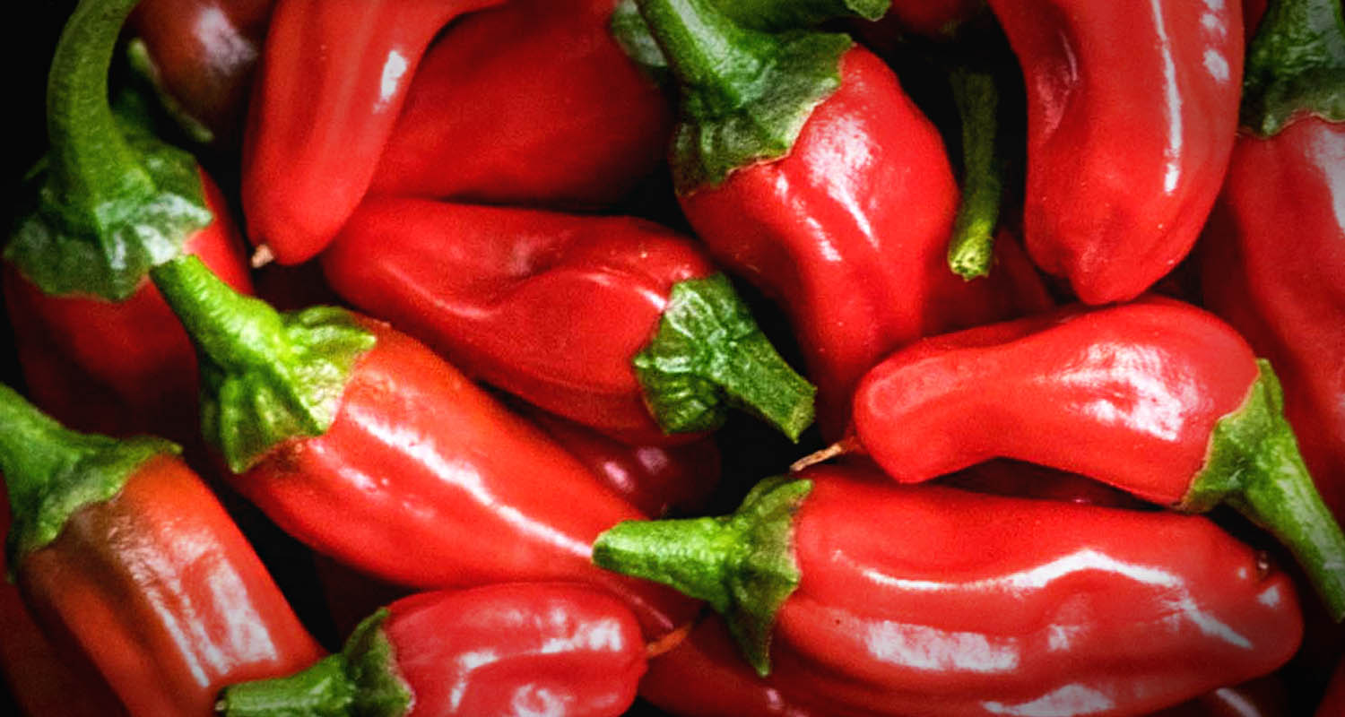 Avoid Hot Peppers and Other Lectins to Stay Out of the Hospital_header