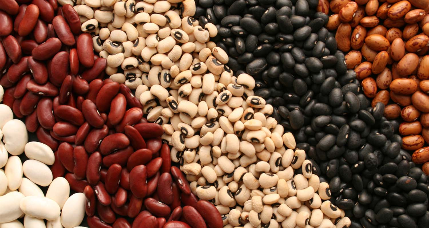 Foods That Cause Gas beans