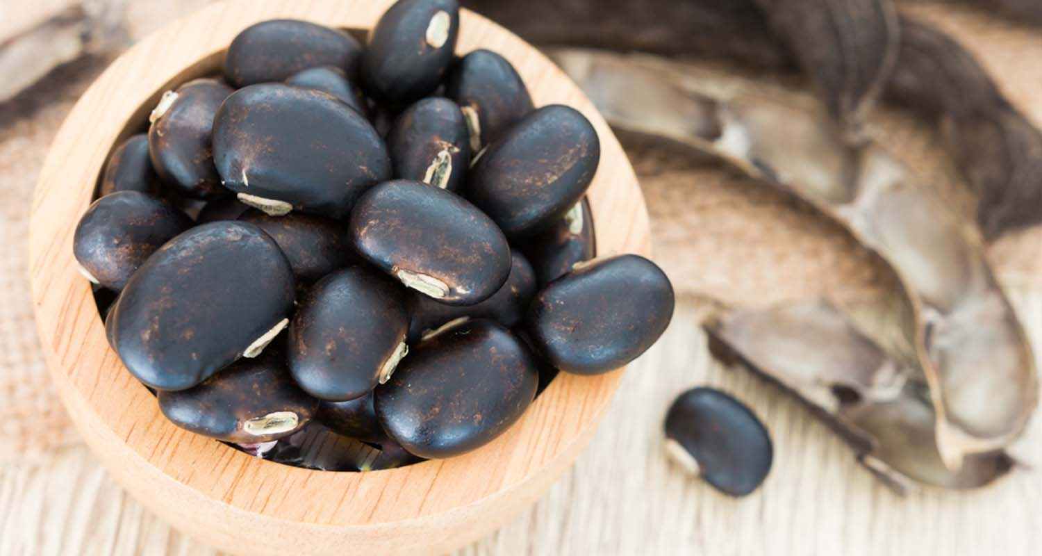 Mucuna Pruriens: The Mood-Boosting Productivity Pill You've Been Looking For
