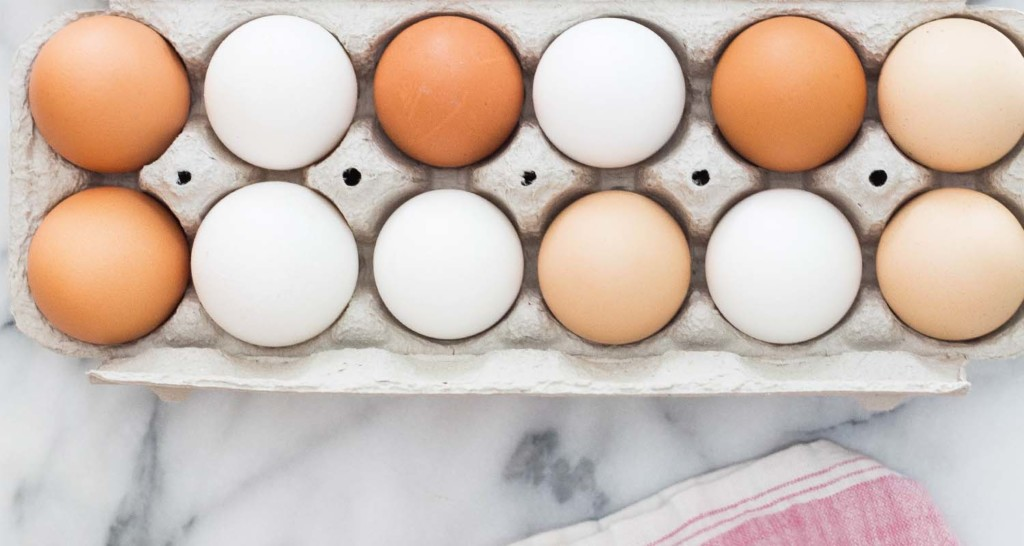 The Best Sources of Protein _Pastured eggs